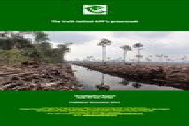 Le WWF d�nonce les campagnes de marketing vert du papetier indon�sien APP