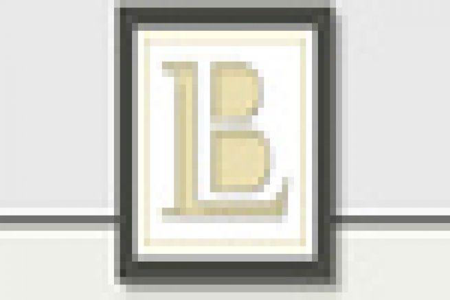 Packaging : Litho-Bru (16), reprend le p�le imprimerie du champenois Sparflex (51)