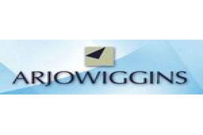 La cog�n�ration biomasse de l'usine � papier ArjoWiggins Bess� sur Braye (72) se pr�cise