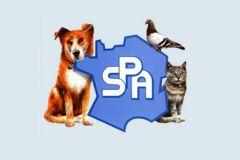Le précédent logo de la SPA