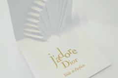 Blotter Dior