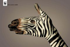 Give a hand to wildlife. Campagne WWF international signée Saatchi & Saatchi.