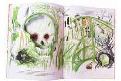 Pages intérieurs La Bataille des grenouilles et des souris de Daniele Catalli aux éditions Amaterra